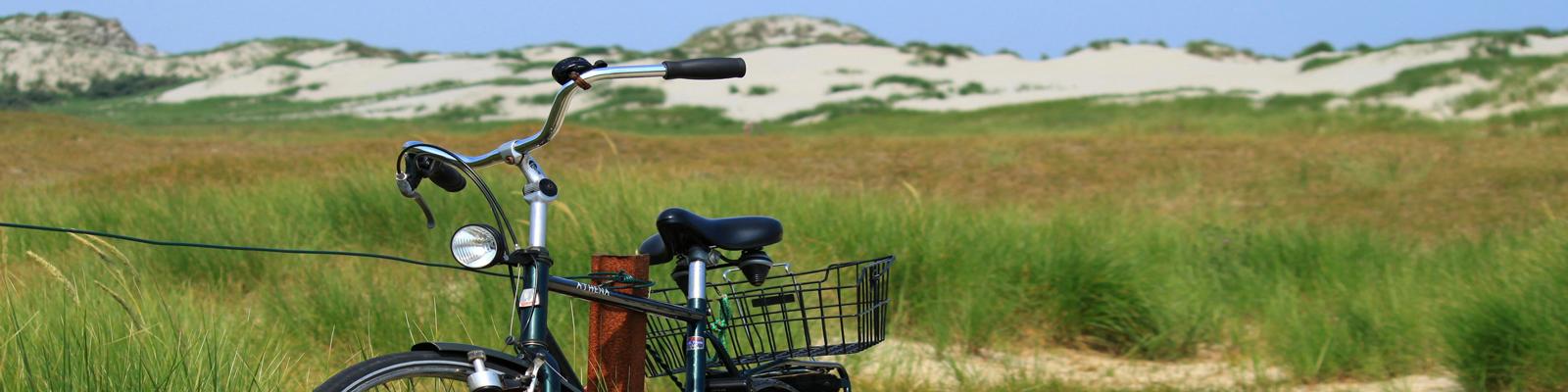 Heerlijk uitwaaien tijdens een fietstocht door de duinen.